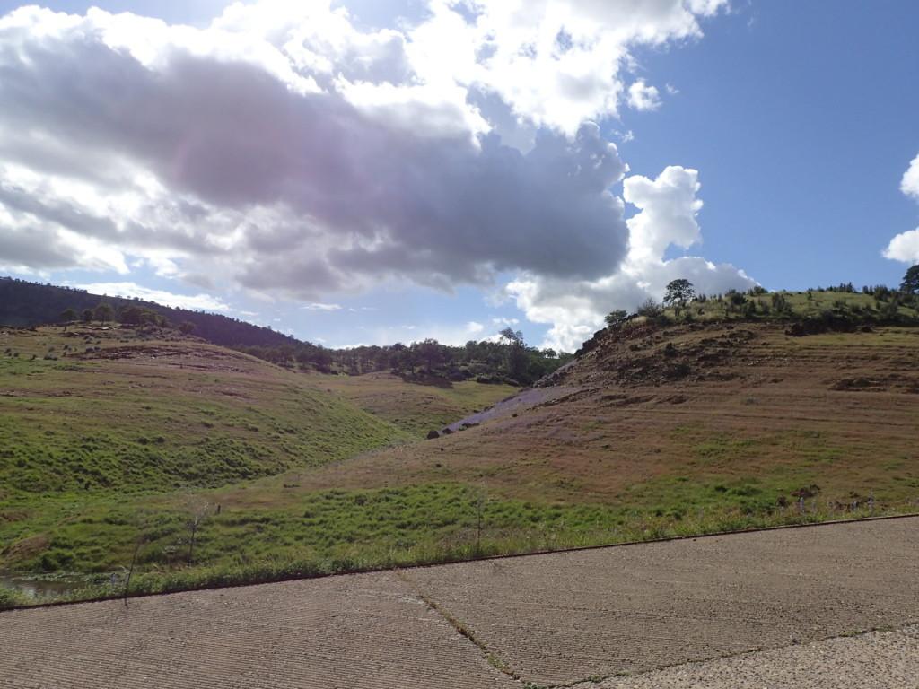 Lavender covered hills